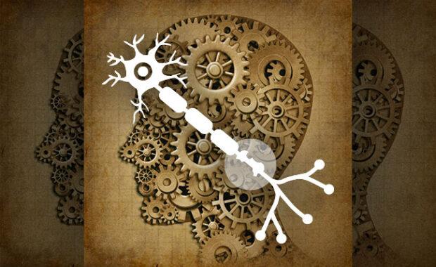 Diferenças entre a Esclerose múltipla e a Esclerose lateral amiotrófica